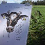 Milch- und Fleisch ohne schlechtes Gewissen